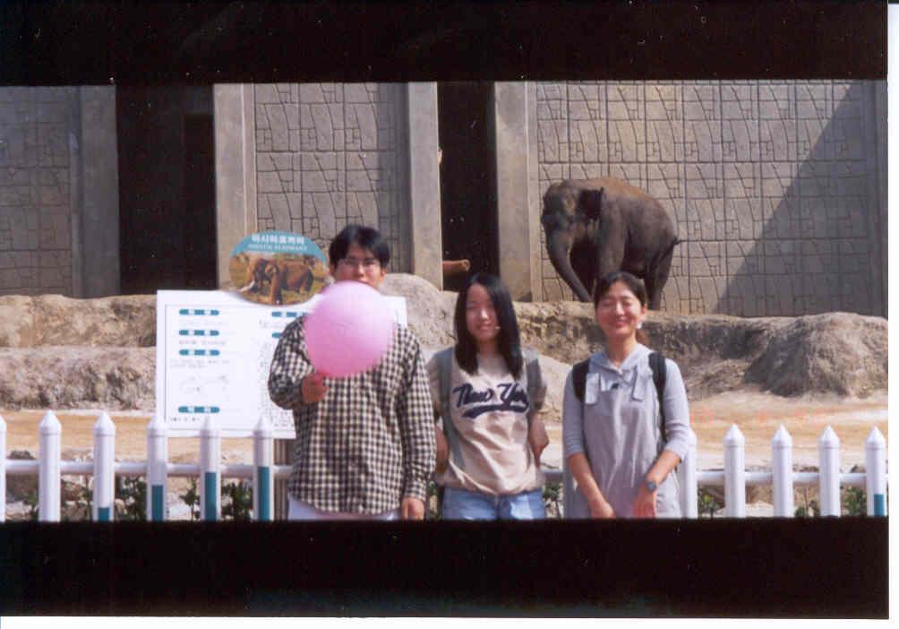 코끼리 앞에서 나, 용가리, 또라이몽